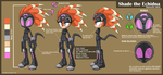 Character sheet: Shade the Echidna by Tanzilla