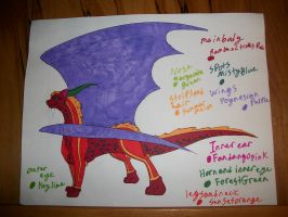 Contest Entry for Heart-Dragon by Alianna013