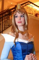 Sleeping Beauty - Princess Aurora by FireLilyCosplay