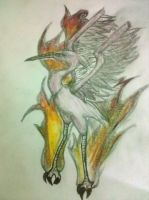 x.x Flaming Bird Design x.x by hikariix3