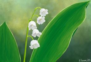 Lily Of The Valley by creativsis