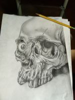 skull drawing by gkarts661