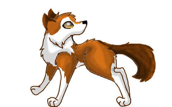 Dhole by Co-beakling1