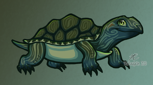Tiny Turtle by therougecat
