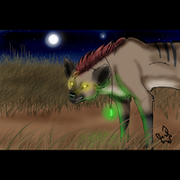 hyena on the hunt by timmy-gost