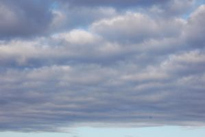 Clouds by Psittacidae13