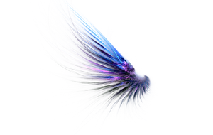 Feathered wing Fractal Stock by Midnight-Fractals