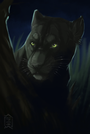 panther by Brevis--art