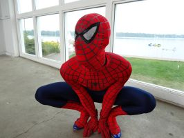 Spider-man Cosplay 2 by SpenceOlson