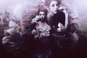 Diamond Header by lucemare