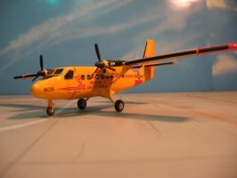 Twin Otter to the rescue by TomCatDriver