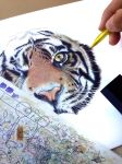 One Eyed Tiger - Ballpoint Pens by Godofpen