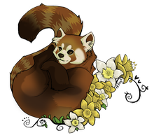 Red Panda by GoreKat