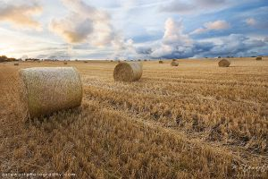 Dunnottar Hay Bales by FlippinPhil