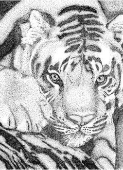 Stippling Tiger by Galaxia