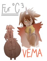 VEMA FUR oC 3 next projet by phation