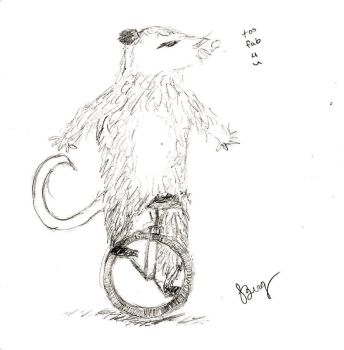 RQ: Awesome-Pawesome-Unicycling Opossum by TheOriginalBeatleBug