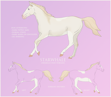Starwhale Reference Sheet by forestnymphxoxo