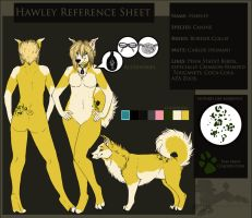 Hawley Reference Sheet (Commission) by PinkScooby54