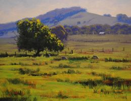 Hunter  Valley Landscape by artsaus