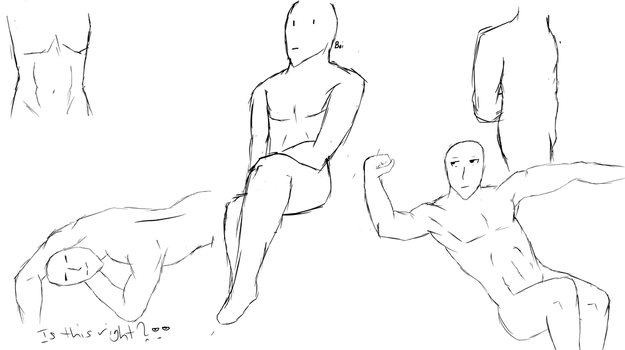 Male Anatomy Practice Sheet by ImperialKit