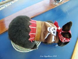 Pirate Costume for Rabbit 3 by Cillana