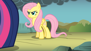 Pony Up Fluttershy by CloudshadeZer0