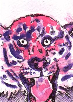 Strangely Pink Tiger by texanspaniard