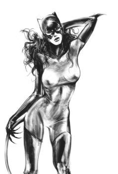 Catwoman by MikiValentine