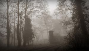 Misty morning at the gate by April-Mo