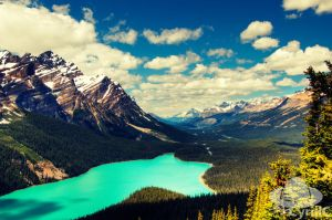 Lake Peyto, Jasper National Park by CyrillC