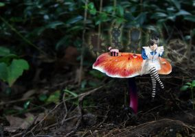 Ciel in Wonderland by Taymeho