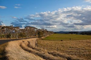 Heading to Hampton by FireflyPhotosAust