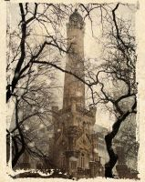 Watertower polaroid by dogeatdog5