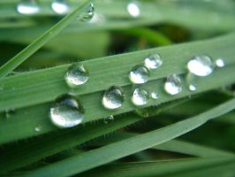 water drops 2 by sacral-stock