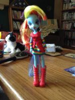 Rainbow Dash Equestria Girls Doll Outfit 1 (Wings) by FawkYewImaCosplayer