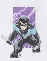 Nightwing by Pauljhill