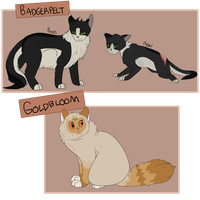 Badgerpelt and Goldbloom by Silvaina