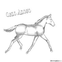 Oplo Alogo Foal lines NOT FREE by xTrippingOnYoux