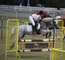 STOCK Showjumping 459 by aussiegal7