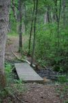 Little Bridge in the Woods by stockinthecorridors
