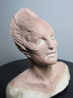 Cinema Makeup open house Prosthetic Sculpt. by IanLome