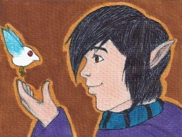 A Link Between Worlds: Ravio and Sheerow by TwilightKeyblade928