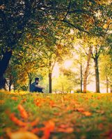 A Warm Afternoon by MyLifeThroughTheLens