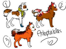 Dog Adopts by nayerpoo