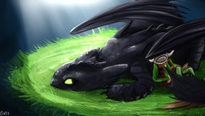 Hiccup and Toothless by CharlieMcCarthey