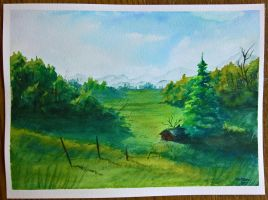 Foothill Meadows by Callego
