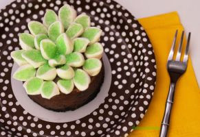 Chocolate Fudge Cake w/ Marshmallow Flower by theresahelmer