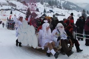 Horn Sledge Race 2013 42 - Devils and Angels by Icedragon300