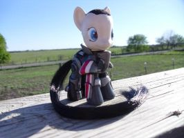 Shepard Pony by CustomsByKatika